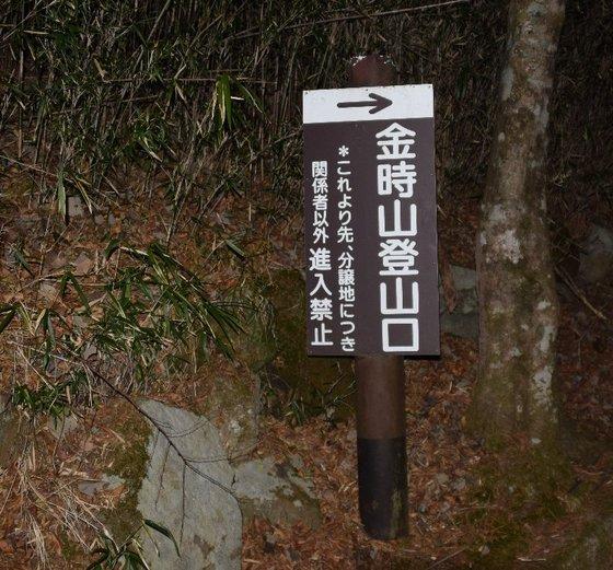 DSC_0009-791.jpg