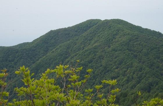 P5030696-200-fuji.jpg